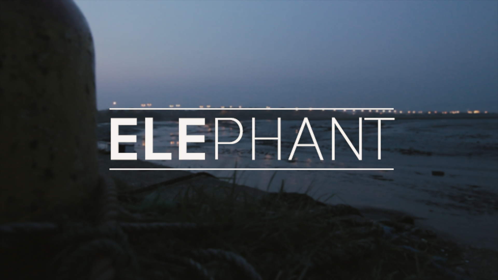 Spirit Store Dundalk Elephant